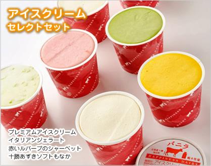 アイスクリームセレクトセット 10個
